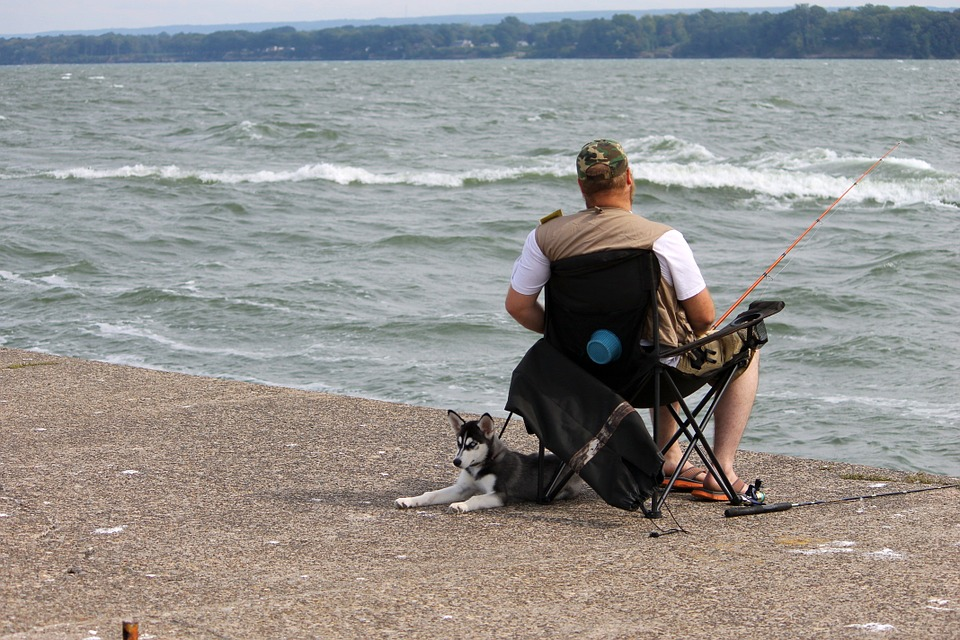 How to Safely Take Dog Fishing